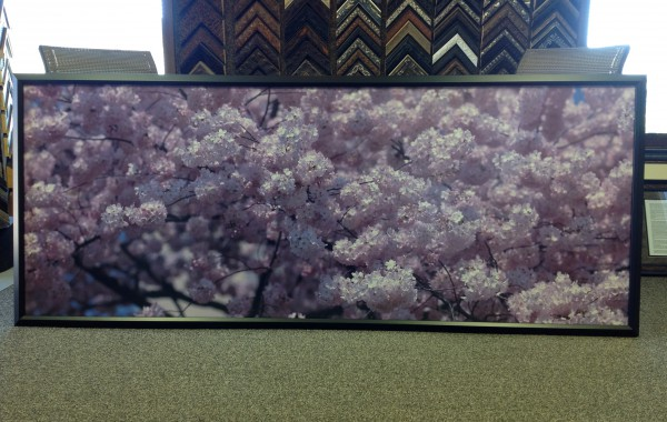 Oversized Photo Framed