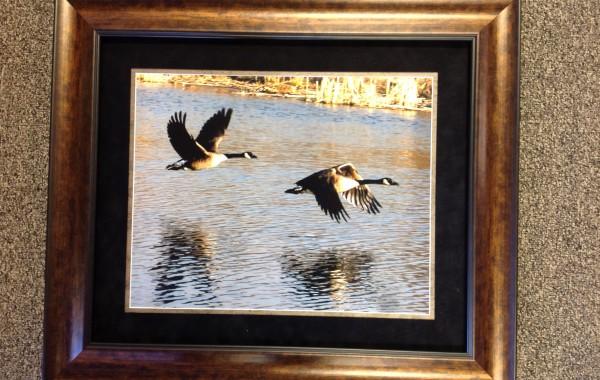 Photo Custom Framed